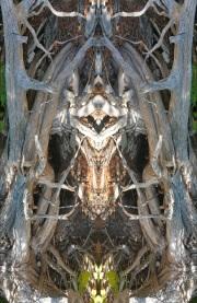 Mirrored1_20160618_235111