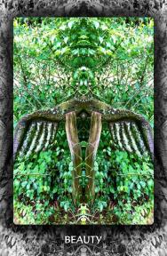 Arboretum Imaginarium_Beauty