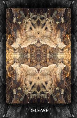 Arboretum Imaginarium_Release