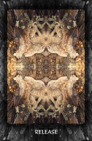 Arboretum Imaginarium_Conf_Print_B_000007