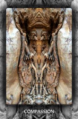 Arboretum Imaginarium_Conf_Print_B_000019