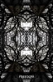 Arboretum Imaginarium_Conf_Print_B_000023
