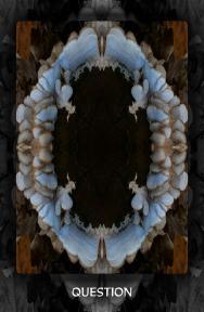 Arboretum Imaginarium_Conf_Print_B_000028