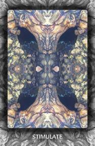 Arboretum Imaginarium_Conf_Print_B_000031