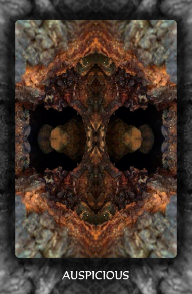 Arboretum Imaginarium_Conf_Print_B_000039