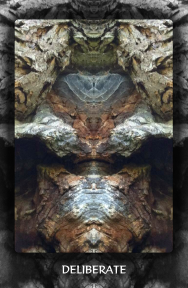 Arboretum Imaginarium_Conf_Print_B_000043