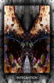 Arboretum Imaginarium_Conf_Print_B_000047