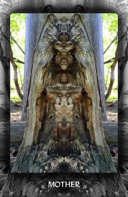 Arboretum Imaginarium_Conf_Print_B_000050