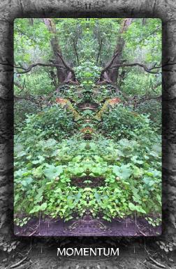 Arboretum Imaginarium_Conf_Print_B_000051