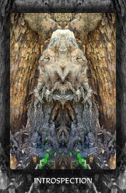 Arboretum Imaginarium_Conf_Print_B_000052