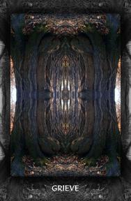 Arboretum Imaginarium_Conf_Print_B_000053